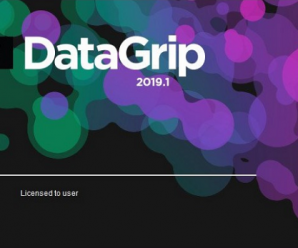 JetBrains DataGrip 2019.3.1 build 193.5662.58 for Win & MacOS & Linux + License Key