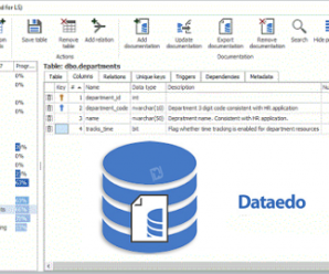 Dataedo v8.0.2 Enterprise Edition + Portable + License Key