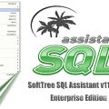 SoftTree SQL Assistant v11.1.115 Enterprise Edition + Crack