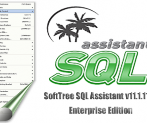 SoftTree SQL Assistant v11.1.115 Enterprise Edition + Crack