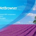 TeamDev DotNetBrowser v1.21.2 + Patcher