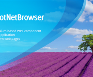 TeamDev DotNetBrowser v1.21.2 + Patcher