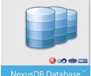 NexusDB v4.5018 Embarcadero Edition for D10.3 Rio Retail