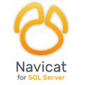 PremiumSoft Navicat for SQL Server v15.0.8 x86 & x64 + Patcher