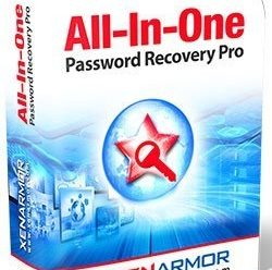 All-In-One Password Recovery Pro Enterprise 2021 v6.0.0.1 Portable