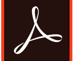 Adobe Acrobat Pro DC v2021.001.20135 Multilingual Portable