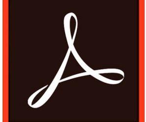 Adobe Acrobat DC v21.001.20135 (x64) Pre-Activated [macOS]