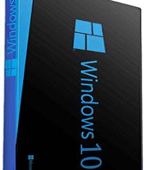 Windows 10 Pro Lite (x64) (21H1) Version 2009 Build 19043.964 [En-US] Pre-Activated